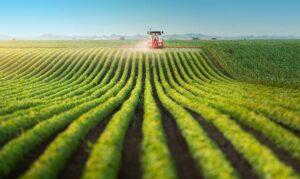 Read more about the article Notários e o Agronegócio: uma parceria fundamental para os produtores rurais
