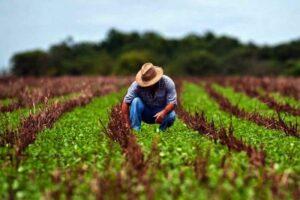 Read more about the article Cartórios de RC garantem exercício da cidadania para milhões de trabalhadores do agronegócio